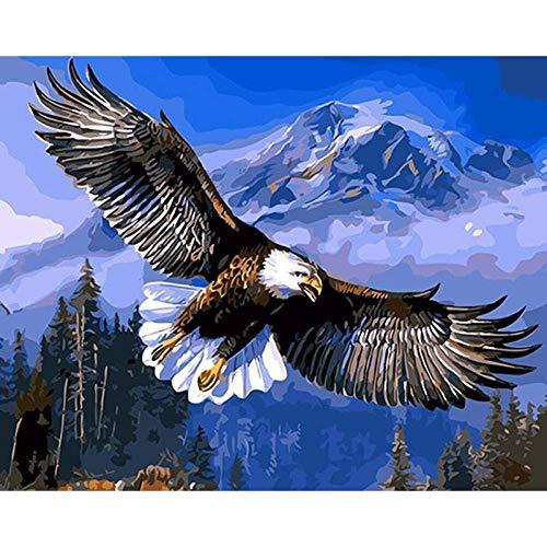 Xpboao Pintar por números - Águila Calva Alza Animal - Pintura de Arte Moderno - Kit de Pintura de Bricolaje Adecuado para Adultos y Principiantes - 40x50cm - Sin Marco