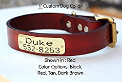 Magnus Leather Dog Collar 1