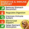 Dog Probiotics Treats for Picky Eaters - Digestive Enzymes + Prebiotics - Chewable Fiber Supplement - Allergy, Diarrhea, Gas, Constipation, Upset Stomach Relief - Improve Digestion, Immunity #1