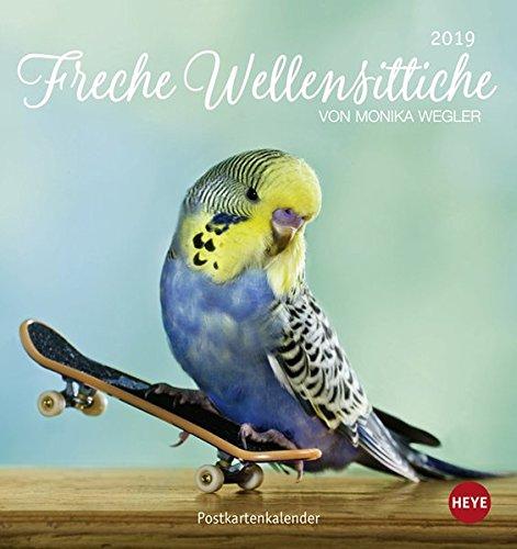 Freche Wellensittiche Postkartenkalender - Kalender 2019