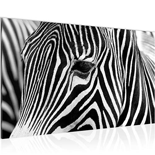 Bild Afrika Zebra Wandbild Vlies - Leinwand Bilder XXL Format Wandbilder Wohnzimmer Wohnung Deko Kunstdrucke Schwarz Weiß 1 Teilig - MADE IN GERMANY - Fertig zum Aufhängen 001414a
