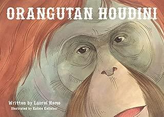 Orangutan Houdini