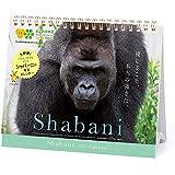 2021年 シャバーニ・格言(卓上)カレンダー 1000115894 vol.036