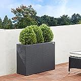 Deuba Macetero de Poliratán con 3 macetas extraíbles 88x30,5x60cm para Interior y Exterior jardinería Color a Escoger