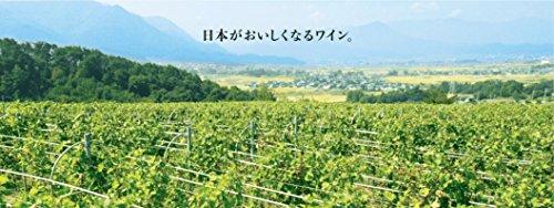 キッコーマンマンズワイン『酵母の泡青森りんご720ml』