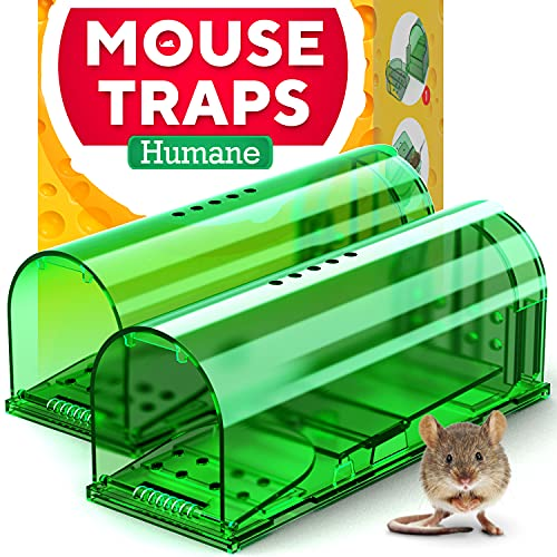 Humane Catch and Release Indoor / Outdoor Mouse Traps Pack of 2 - Easy Set Durable Traps, Safe for Children, Pets and Humans - Instantly Remove Unwanted Vermin from Your Home