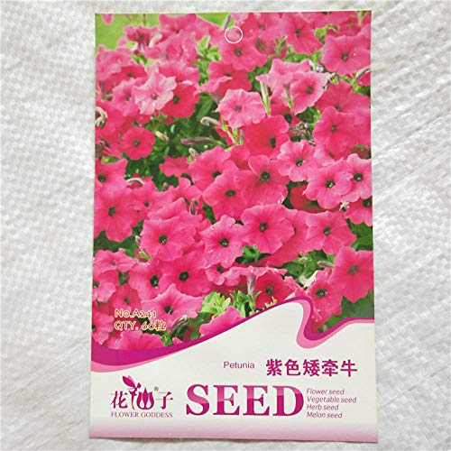 Aerlan Wild Flower Seed Meadow,Balcony Flower Seeds,Morning glory color package landscaping seeds-1pcs_H