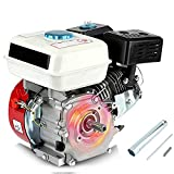Motor Gasolina 4 Tiempos, 3.6l Motor de Gasolina de...