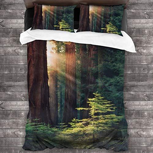 Wdoci Duvet Cover Set 3 PCS,Morning Sunlight In Wilderness Yosemite Sierra Nevada United States Nature,Bedding Duvet Cover with 2 Pillowcases(King 220x230cm)