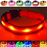 Fun Pets USB Rechargeable LED Dog Safety Collar (Medium (32cm - 50cm / 12.6