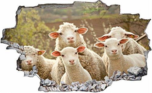 DesFoli Schafe Sheep 3D Look Wandtattoo 70 x 115 cm Wanddurchbruch Wandbild Sticker Aufkleber C107
