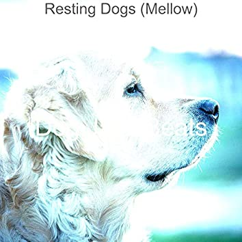 Resting Dogs (Mellow)