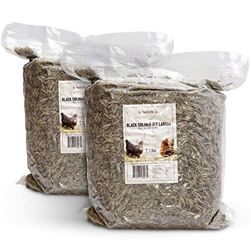 Natures Feeds Superior Treats for Chickens (10 lbs) - 85x More Calcium vs Mealworms -...
