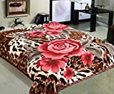 Marina Decoration 11 LB Oversized Heavy Woven Fluffy Plush Soft Warm Korean Style Mink 2 Ply Printed Flannel Fleece Throw Raschel Blanket Reversible Embossed Solid, 86 x 94 Inch Floral Leopard Pattern