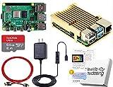 Raspberry Pi 4 アーマード (4GB基盤, アーマーケース(ゴールド:FAN無), Anker 18W電源, 高速型64GB MicroSD,4K出力用HDMIケーブル2本, スイッチケーブル)