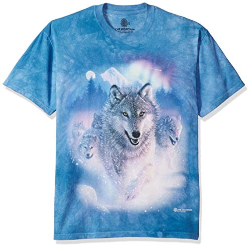 The Mountain unisex adult Northern Lights Shirt, Blue, Medium US