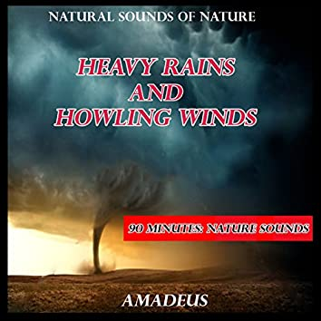 Heavy Rains and Howling Winds: Natural Sounds of Nature