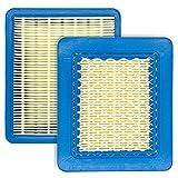 JiangLin 2pcs Filtro aria Tagliaerba per Cartuccia del filtro per Tosaerba,Cartuccia quadrata per tosaerba
