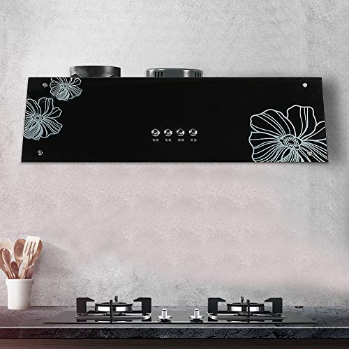 Dunstabzugshaube für Küche, 75 cm, 13 m3 / min, 2 Geschwindigkeitsstufen, 120 W, leicht zu reinigen, schnelle Entnahme von Rauch, Dunstabzugshaube aus gehärtetem Glas (220 V)