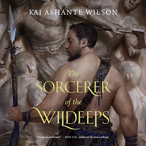 The Sorcerer of the Wildeeps audiobook cover art