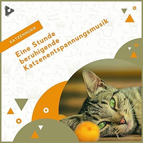 Katzenmusik, Entspannende Musik für Katzen & Beruhigende Kätzchenmusik