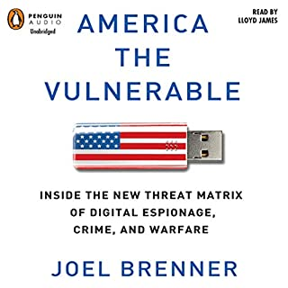 America the Vulnerable audiobook cover art
