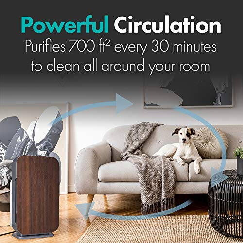 Alen BreatheSmart FLEX Air Purifier, Medical Grade Filtration H13 True HEPA for 700 Sqft, 99.99% Airborne Particle Removal, Captures Allergens, Bacteria, Germs, Mold, Odors, in Espresso