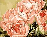 FGHJSF Pintar por numerosFlores Rosadas Pintura al óleo de DIY por Números con Pinceles y Pinturas para Adultos Niños Principiantes Lienzo Pintura al óleo - 40 X 50 cm (Sin Marco)