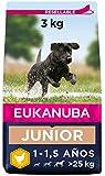 Eukanuba Alimento seco para perros jóvenes de raza grande, rico en pollo fresco 3 kg