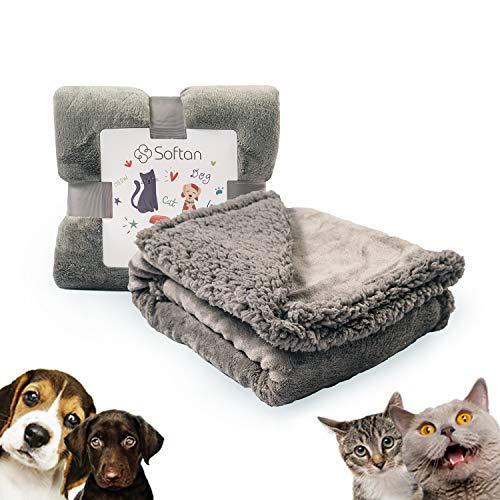 softan Premium Hundedecke, Wendbare Flanell Fleece Sherpa Haustierdecke, Doppelschicht Hundebettdecke für Kleine, Mittlere, Große Hunde, Katzen, Tiere, 76x 100cm, Hellgrau