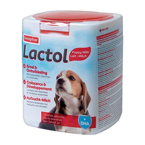 Beaphar Lactol Aufzucht-Milch 500 g, vollwertiger Muttermilchersatz für Hundewelpen von Geburt an