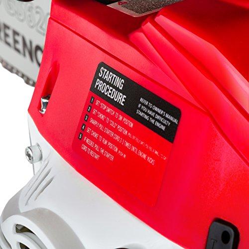 "Greencut GS620X Motosega a Scoppio Benzina 62cc-3,8cv Spada 20"" Leggera e Potente, 62 cc"