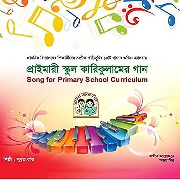 Primary School Curriculumer Gaan