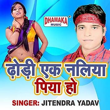 Dhodi Ek Naliya Piya Ho