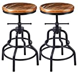 Vintage Industrial Bar Stool-Rustic Swivel Bar Stool-Round Wood Metal Stool-Kitchen Counter Height Adjustable Pipe Stool-Cast Steel Stool 20-27 Inch (Set of 2)