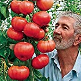 Easy to Grow - Can be grown in indian climate/weather conditions.Do not use for food, feed, or oil purposes,Seeds are only for Agriculture and plantaion purpose Best for planting throughout the year.Germination results on testing are excellent howeve...