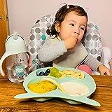 Bebamour Baby Toddler Owl Cub Placa de succión, placa de alimentación Stay Put, placa dividida para bebés Placa de succión linda para niños pequeños Placa de plato para bebé sin BPA (Verde)