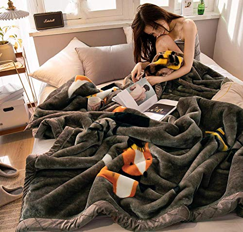 GCP Premium Weighted Blanket, Coral Fleece Blanket Quilt, Thicken Single Student Dorm Flannel Double Cover Blanket-B_150 * 200cm 2.5kg