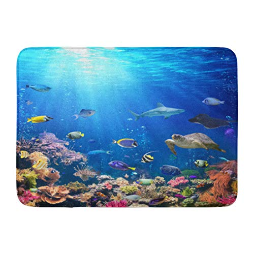 Emvency Doormats Bath Rugs Outdoor/Indoor Door Mat Blue Aquarium Underwater Scene Coral Reef and Tropical Fish Colorful Seabed Bathroom Decor Rug Bath Mat 16' x 24'