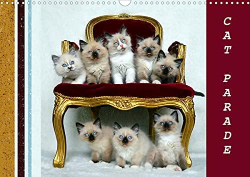 CAT Parade (Wall Calendar 2022 DIN A3 Landscape)