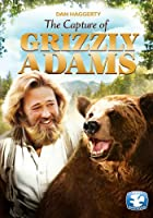 Grizzly Adams: The Capture of Grizzly Adams [DVD] [Import]