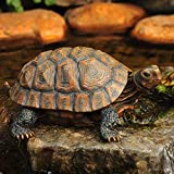 Danmu 1Pc of Polyresin Tortoise Statue, Halloween Decorations, Garden Statues, Outdoor Statues, Garden Ornaments, Yard Statue for Home and Fairy Garden Decor (L 12 9/10' x 9 2/5' x 5 1/2')