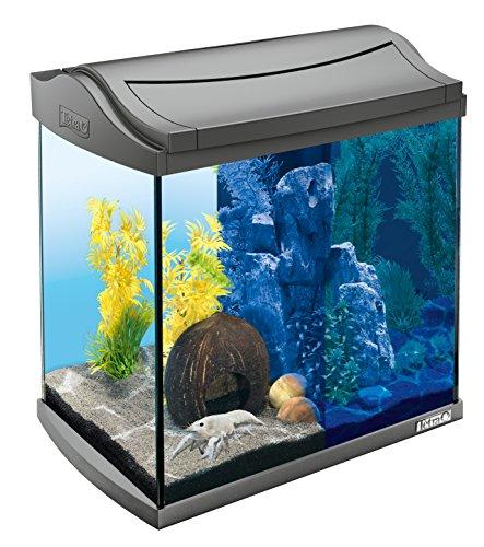 Tetra AquaArt Discovery Line LED Aquarium-Komplett-Set (inklusive LED-Beleuchtung, Tag- und Nachtlichtschaltung und EasyCrystal Innenfilter, ideal für Krebse und Garnelen) 30 Liter anthrazit
