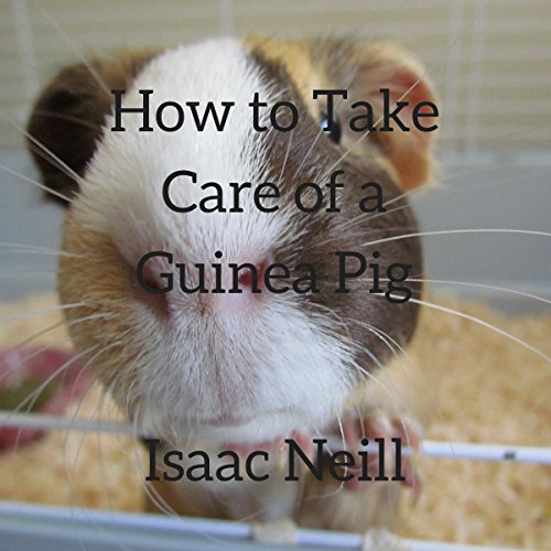 How to Take Care of a Guinea Pig audiobook cover art