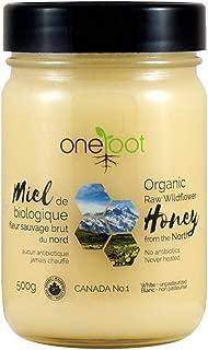 Oneroot Raw Honey, 100% Pure Natural Honey From Canada North in Glass Jar, 17.6oz/500g (Organic Wildflower, 500g)