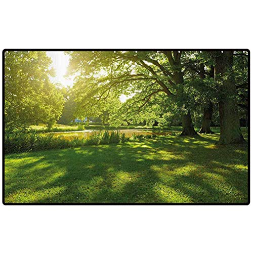 RenteriaDecor Green Outdoor Rugs Summer Park in Hamburg Germany Trees Sunlight Forest Nature Theme Scenic Outdoors Picture Doormat Washable Porch Kitchen Area Rugs