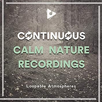 Continuous Calm Nature Recordings