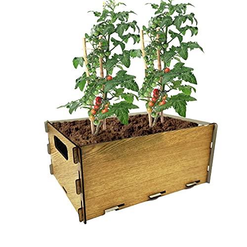 PLANTAWA Kit de Siembra para Tomates, Kit de Cultivo para Huerto Urbano, Kit Autocultivo Interior para Casa, Kit Cultivo de Tomates