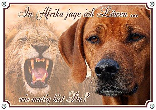 Petsigns Rhodesian Ridgeback - Hundeschild - Metallschild - Warnschild bis DIN A3 bestellbar, DIN A4