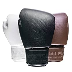 Sanabul BattleForged Boxing Gloves Review